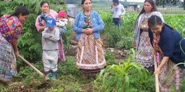 Women in Action (MeA) – Guatemala